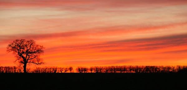 sunset 2 by BeckC