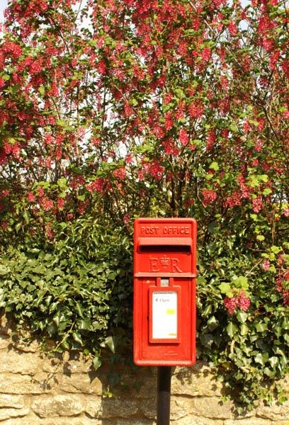 Post Box by BeckC