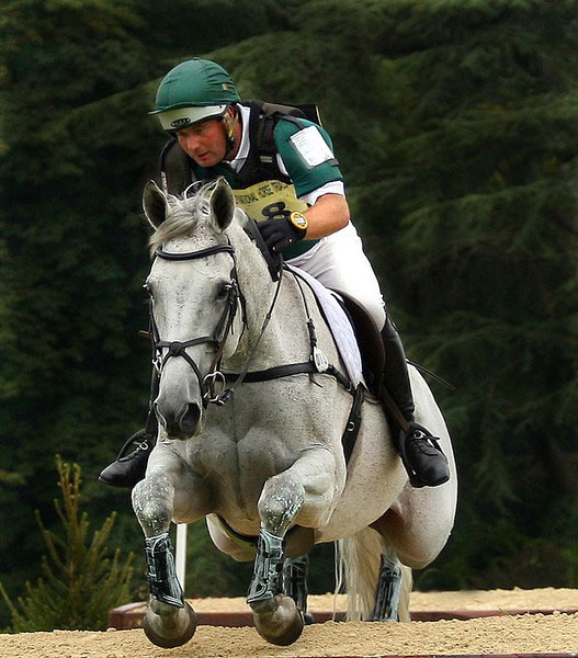 Blenheim Horse Trials by una