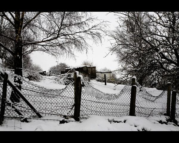 Winter Scene by gary_d
