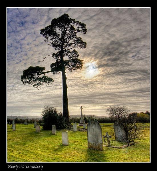 Newport Cemetery by mucker