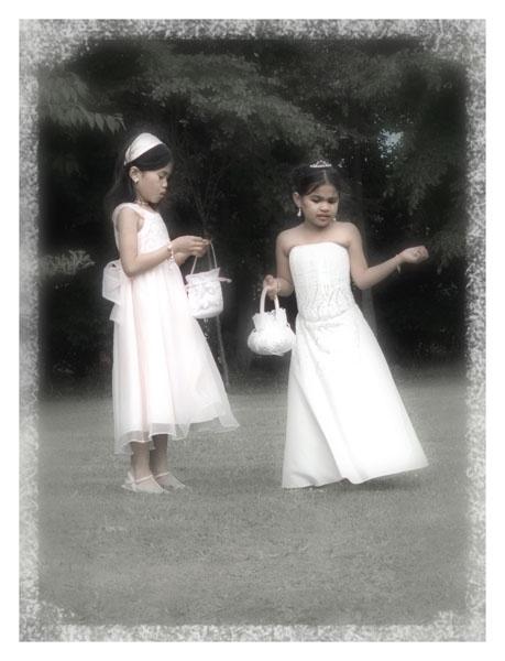 The Bride\'s little helpers by paulmackiemaging