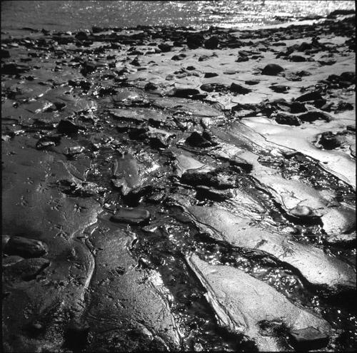 Riverbed by Skatershrew