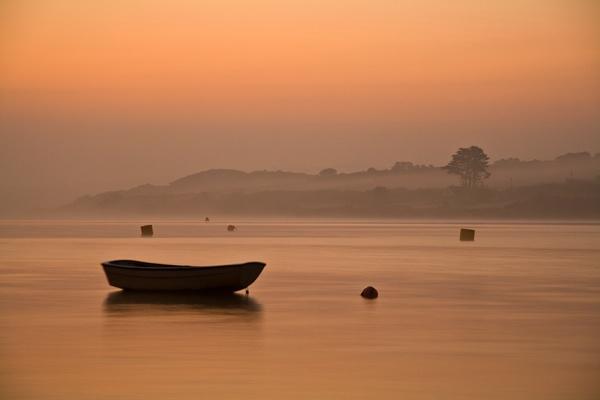 Misty Morning by ljmp