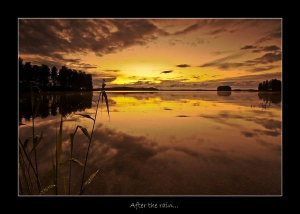 AFTER THE RAIN... by Jou©o