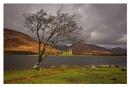 Loch Awe by conrad