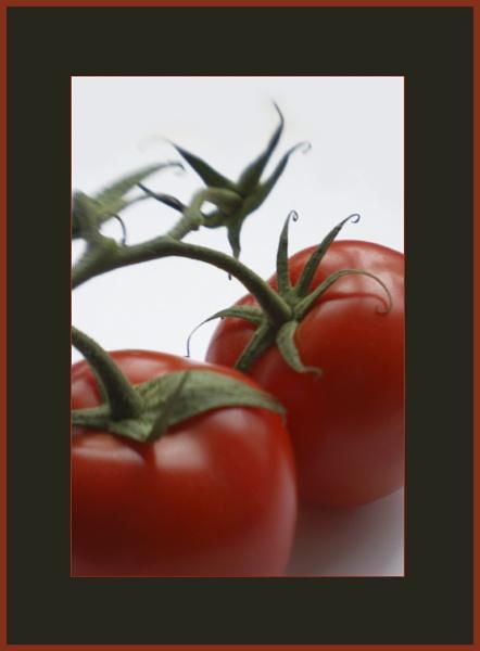 tomatoes by beriah