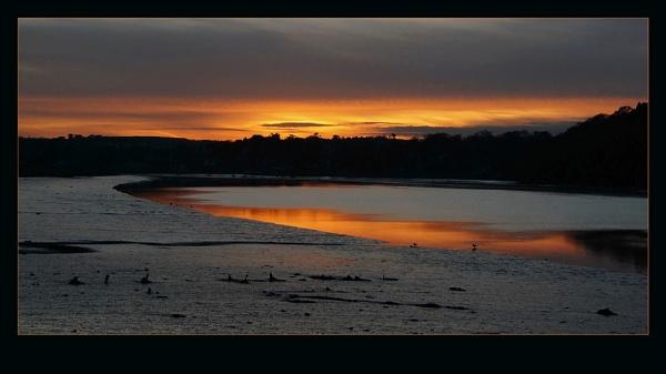 The River Torridge by Bridie