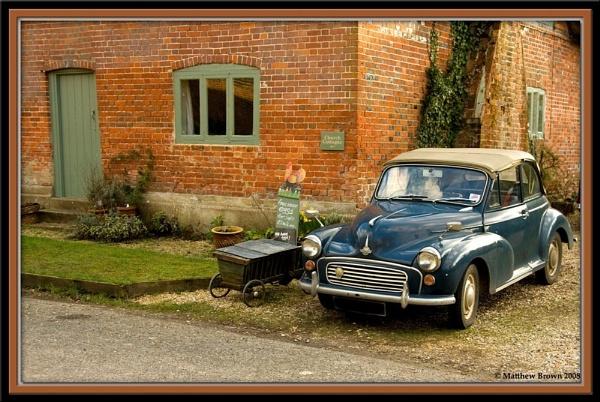 Moggie in Wilton by Herge88