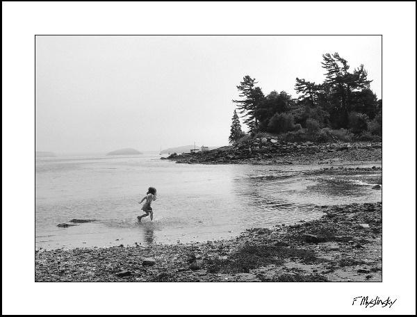 Shoreline Run by tweet26155