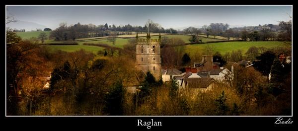 Raglan by Bodiewil