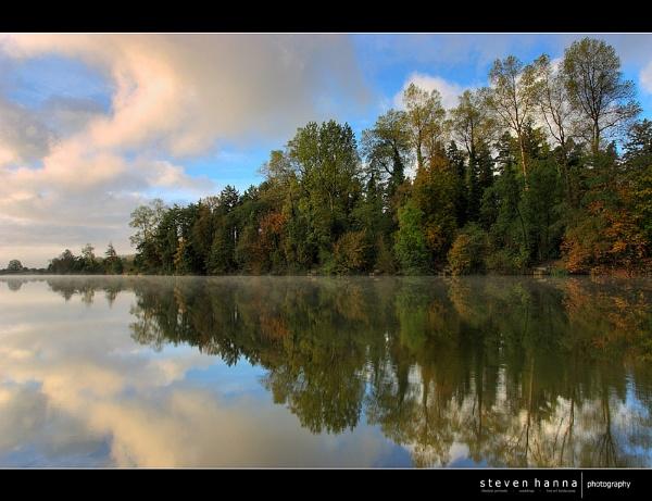 Portglenone Forest by StevenHanna