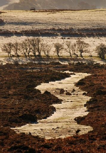 frosty track by dannybeath