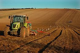 Springtime Tractors