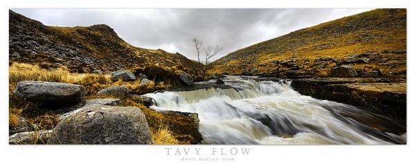 Tavy Flow by pmorgan