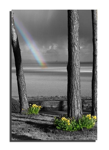 Rainbow by brianjw