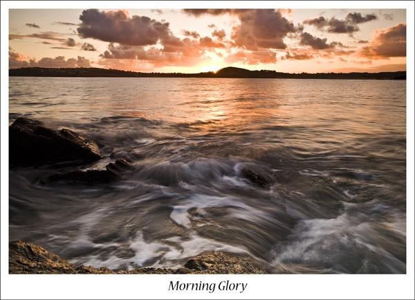 Morning Glory by ljmp