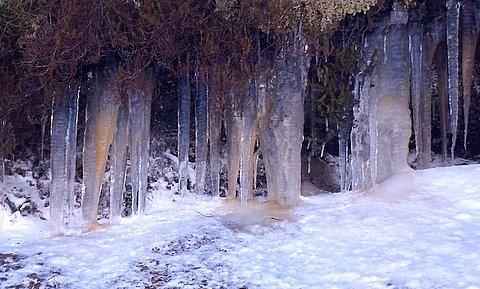 Winter In Scotland by jacqui123
