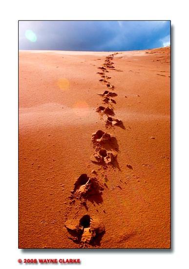 Dune by swanseamale47