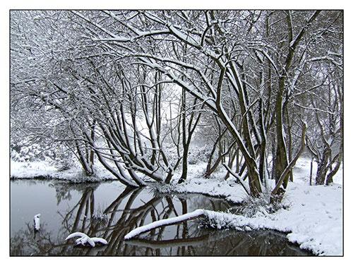 Snow at last by JuliaGavin