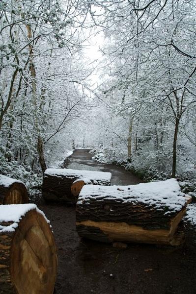 Snow!!!! by yasika