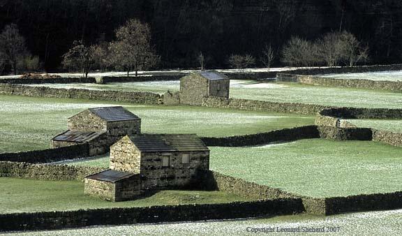 Early morning frost by LenShepherd