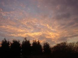 SUNSET ON A WILD EVENING