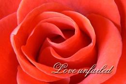 Love Unfurled
