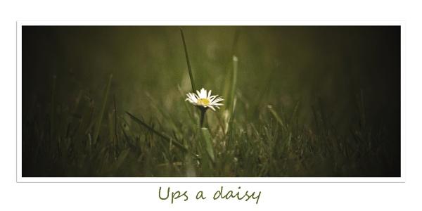 ups a daisy by Davestem