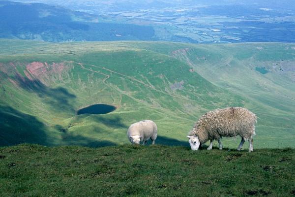 Llyn Cwm Llwch. by Badgerfred