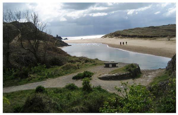 Beach.............. by Lois96