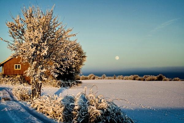 Winter morning by olesyak