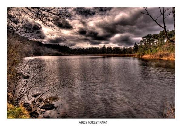 Ards Forest Park 1 by Photogooru