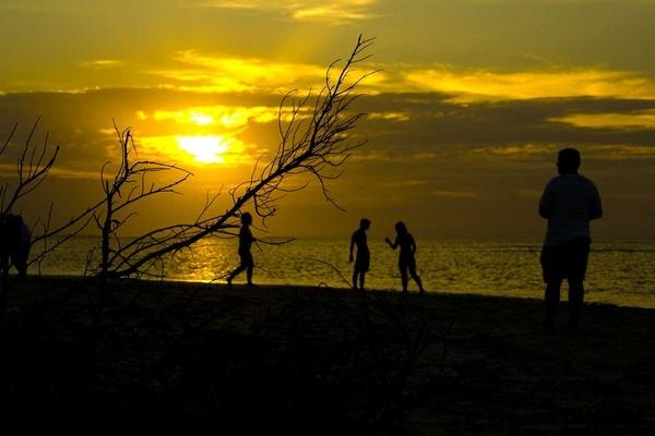 Sundown family by Alex_Scragg