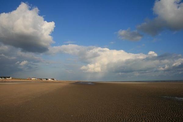 Beachscape 4 by dansi