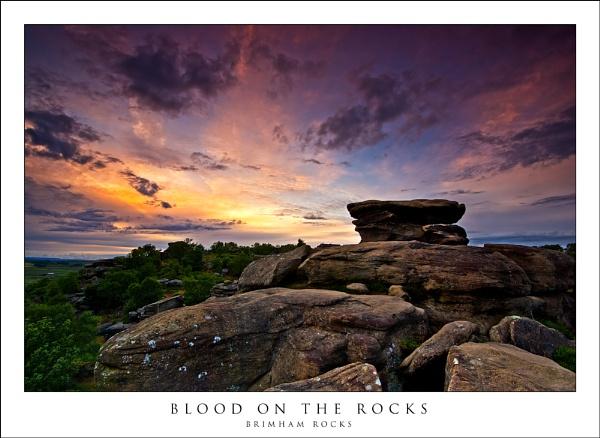 Blood on the rocks by javam