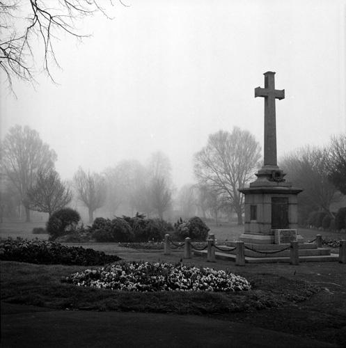 Mist by Skatershrew
