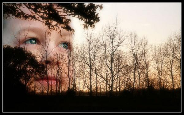 Rising Son by davidturner