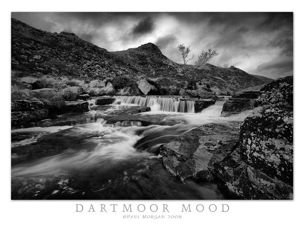 Dartmoor Mood by pmorgan