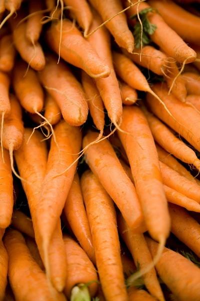 Carrots by DenisePhoto