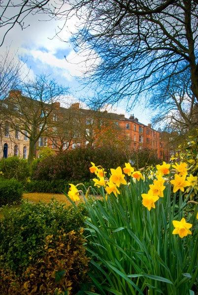 Wilton Street Gardens by BubbaG2000