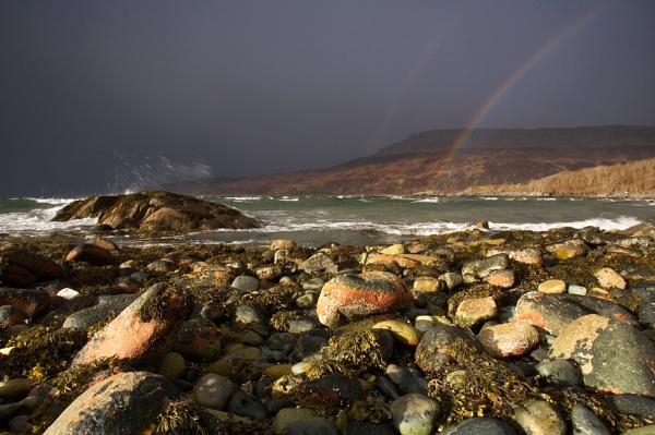Rainbow .......... by carterart