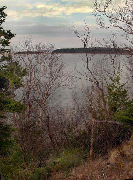 Munroe Island from Caribou by JimV