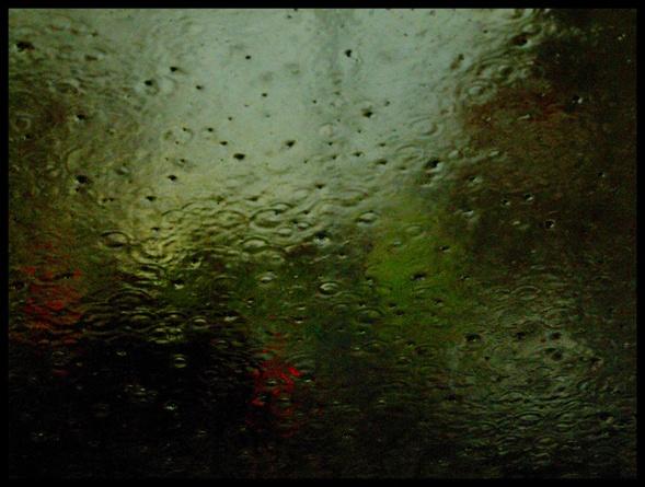 April Shower by iainpb