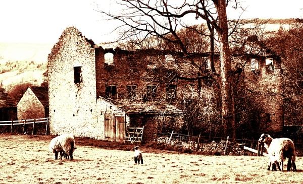 OLD HOUSE by iajacks