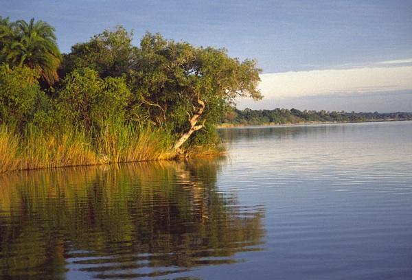 Zambesi Dawn by jinstone