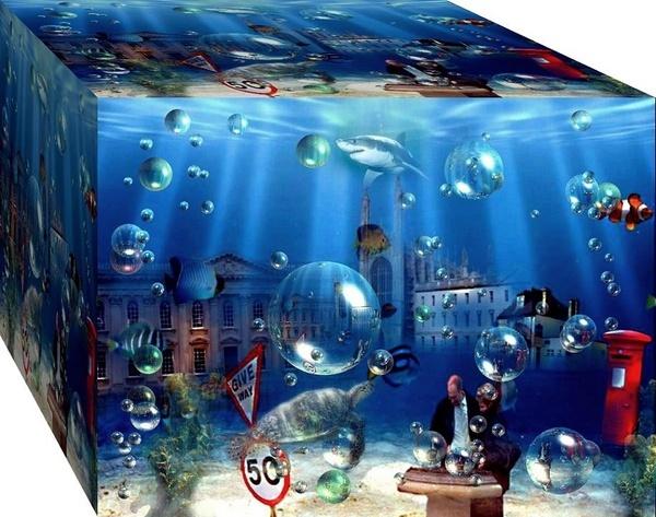 Cambridge Sea Life!!!! by imander