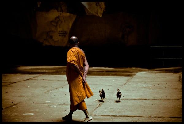 Buddhist monk, Malaysia by bloke