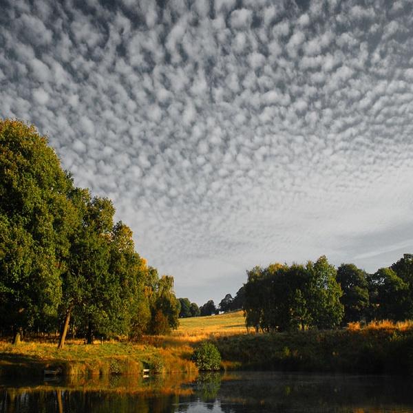 Mackeral sky by NEWMANP