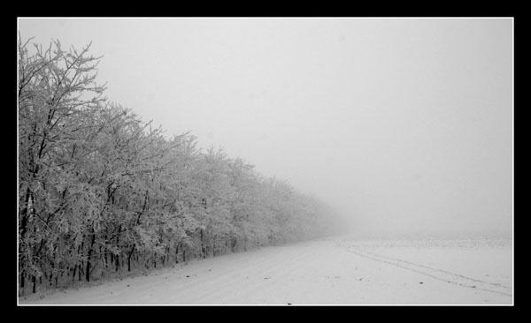 lost in the winter by orangeada